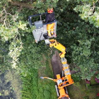 Baumpflege Weserland - über uns